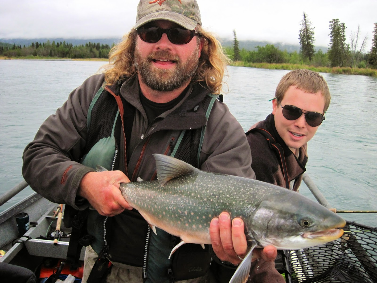 Dolly varden char the second best fish in the kenai for Dolly varden fish